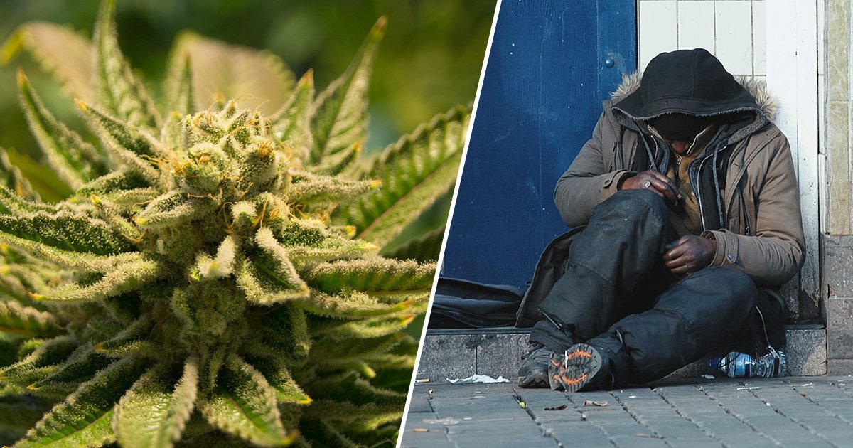 Marijuana Taxes to Help Nevada Homeless